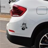 adesivos para carros Interlagos